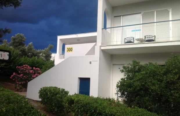 фотографии Holidays in Evia изображение №4