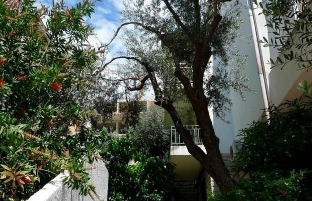 фото отеля Apartments Maslina изображение №17