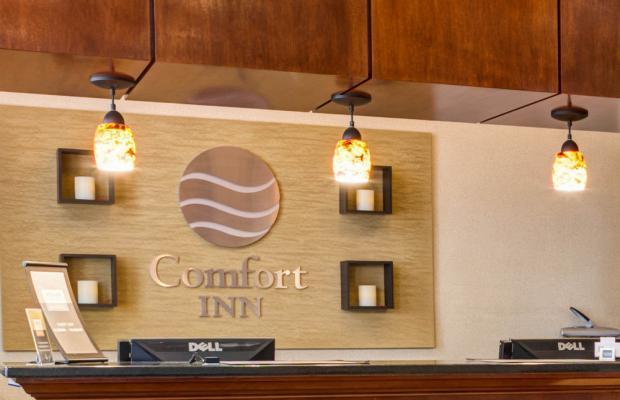 фотографии Comfort Inn Sunset Park / Park Slope изображение №20