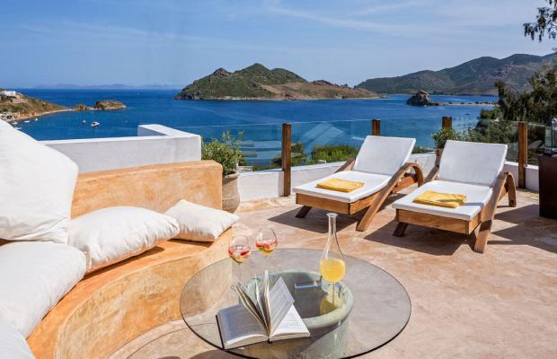 фото отеля Petra Hotel & Suites изображение №21