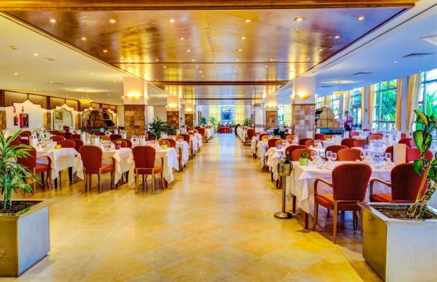 фотографии отеля SBH Costa Calma Palace (ех. Sunrise Costa Calma Palace) изображение №19