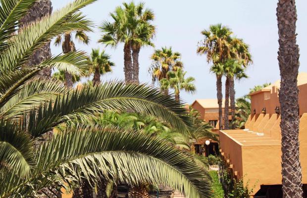 фото отеля Oasis Dunas изображение №17