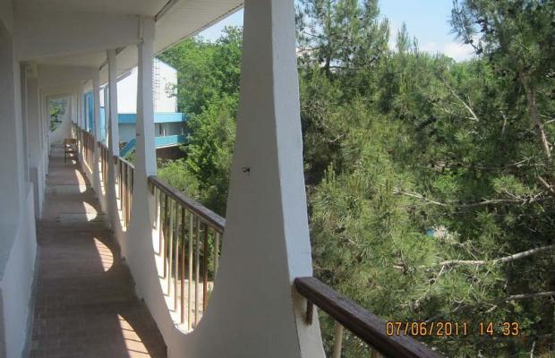 фотографии отеля Пламя (Plamya) изображение №11