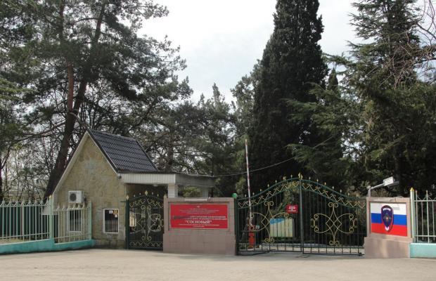 фотографии отеля Сосновый (Sosnovyiy) изображение №3