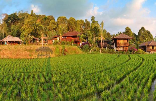 фото отеля Puri Lumbung Cottages изображение №21