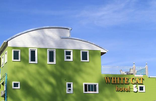 фото отеля White Cat Hotel изображение №1