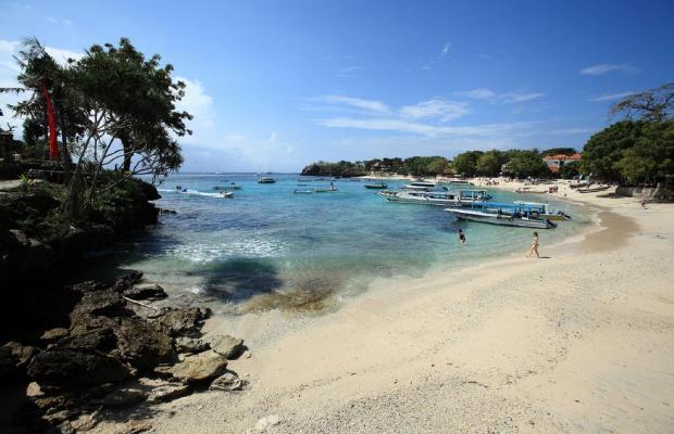 фотографии Sadeg Lembongan (ex. Nusa Lembongan) изображение №8