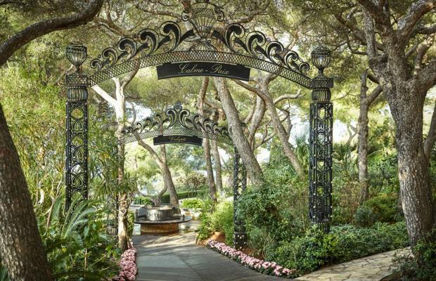 фото The Grand Hotel du Cap Ferrat, A Four Seasons Hotel изображение №10
