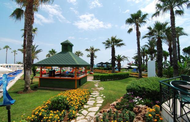 фотографии Adora Golf Resort изображение №8