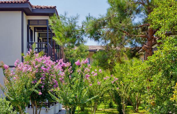 фотографии отеля Club Nena изображение №35