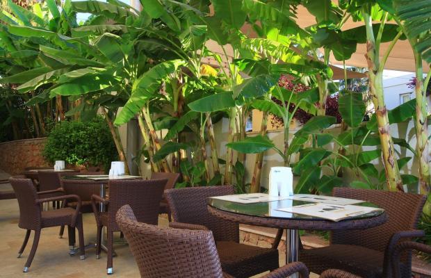 фотографии отеля Mandarin Resort Hotel & Spa изображение №11