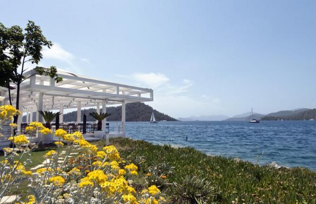 фотографии D-Resort Gocek (ex. Swissotel Gocek Marina Resort) изображение №32