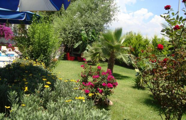 фотографии отеля Villa Flower Boutique изображение №3