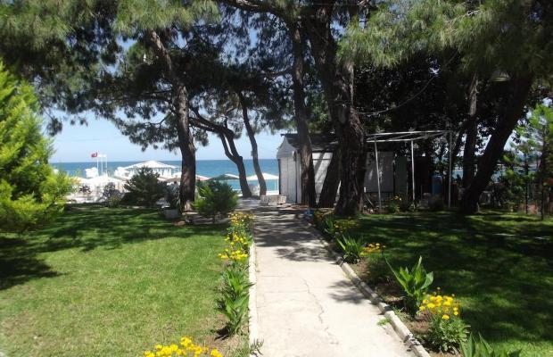 фотографии отеля Rios Beach Hotel (ex. Ege Montana Hotel; Intersport; Viva) изображение №11