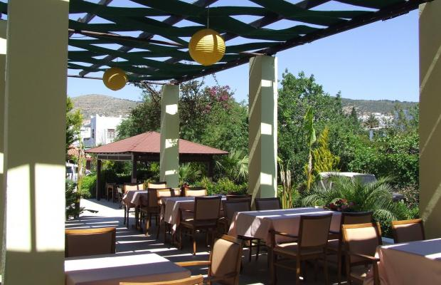 фото Costa Bodrum City (ex. Red Lion Hotel & Studios) изображение №46
