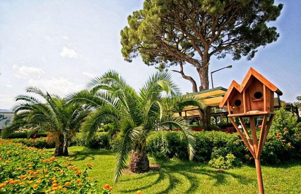 фотографии отеля Zena Resort (ex. Riva Zena) изображение №95