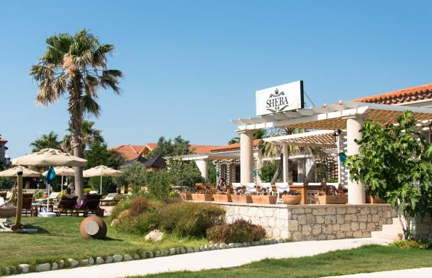 фото Alacati Beach Resort & Spa изображение №34