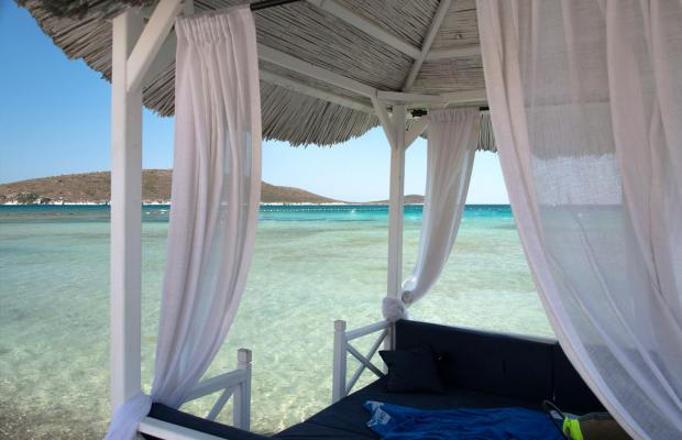 фотографии Alacati Beach Resort & Spa изображение №20