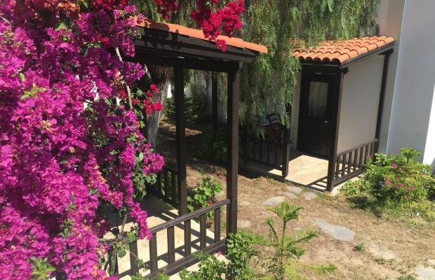фотографии отеля Salinas Beach изображение №3