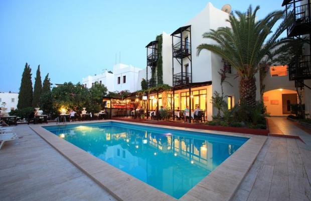 фотографии отеля Paloma изображение №19