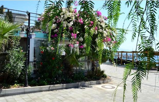 фотографии North Cemre Boutique Hotel & Beach изображение №12