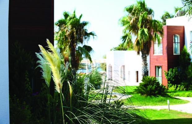 фото Costa Luvi Hotel (ex. The Luvi Hotel; Club Oleal) изображение №2