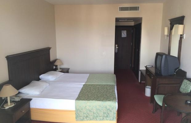 фото отеля Palm D'or изображение №21