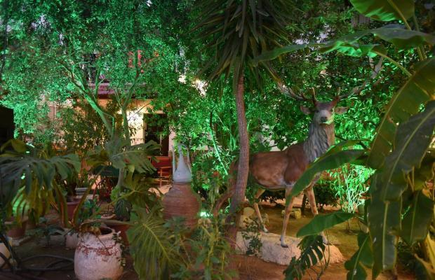 фотографии Istankoy Hotel Bodrum изображение №12
