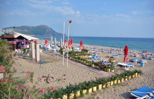 фотографии отеля Kleopatra Dreams Beach изображение №35