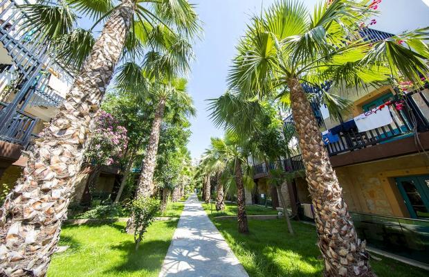 фотографии отеля Jasmin Beach Hotel изображение №43