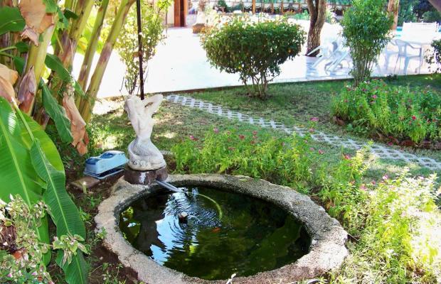 фотографии отеля Club Turkuaz Garden изображение №23