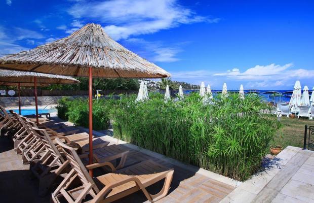 фотографии отеля Cactus Fleur Beach Club изображение №19