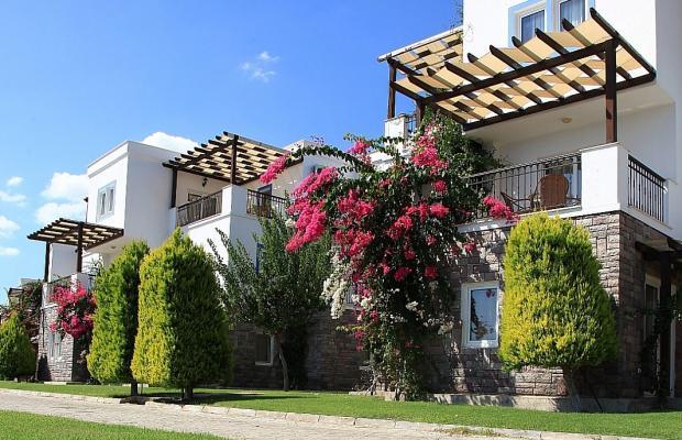 фотографии отеля Aktur Residence изображение №99