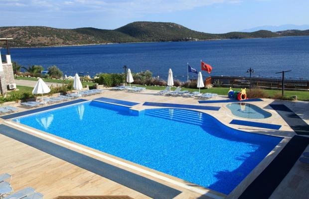 фотографии отеля Aktur Residence изображение №43