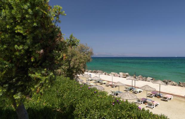 фото отеля Club Familia (ex. Pomelan) изображение №33