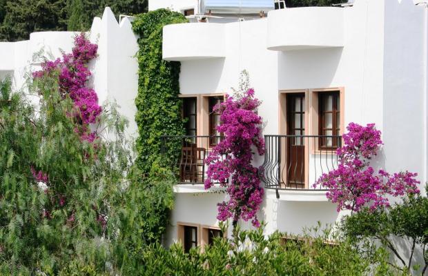 фотографии отеля Flora Safir Hotel изображение №19