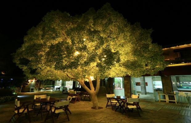 фото Costa Farilya Special Class Hotel Bodrum изображение №34