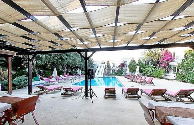 фотографии отеля Club Alisya Beach Hotel изображение №15