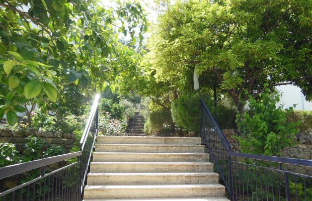 фотографии отеля Naturella изображение №27