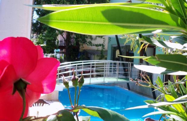 фотографии отеля Dalyan Terrace Hotel (ех. Caria Premium) изображение №23