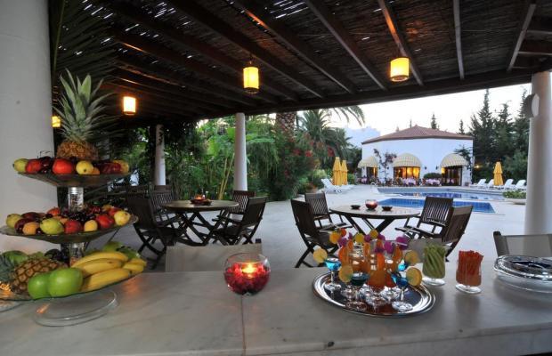 фото отеля Karia Princess изображение №21
