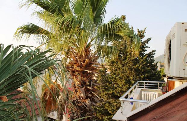 фотографии отеля Green Palm изображение №3