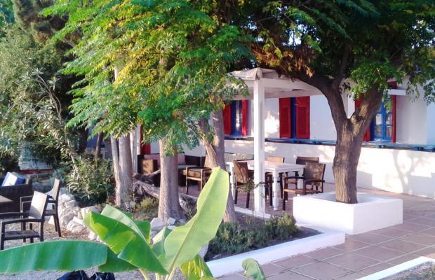 фото отеля Theodorou Beach Hotel изображение №9