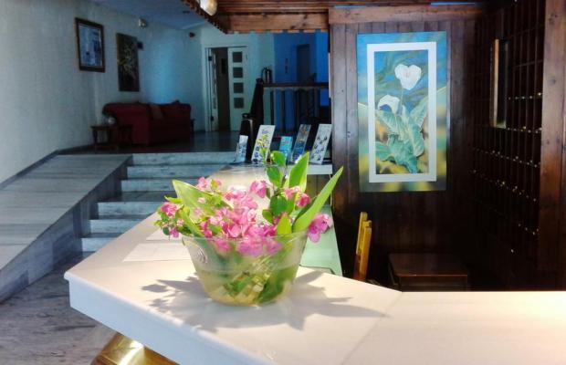 фото Theodorou Beach Hotel изображение №6