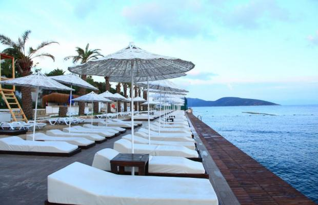 фотографии Bodrum Bay Resort (ex. Virgin Bodrum; Joy Club Bodrum) изображение №40