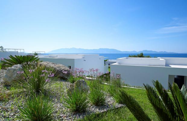 фото отеля Dimitra Beach Resort изображение №53