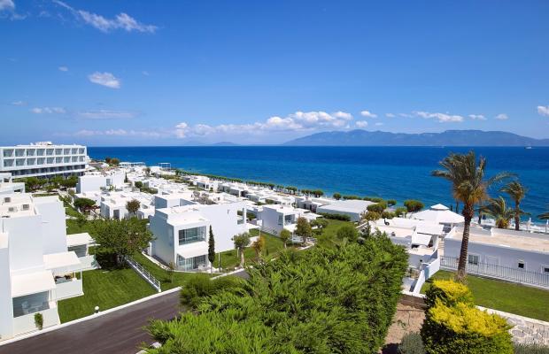 фотографии отеля Dimitra Beach Resort изображение №47