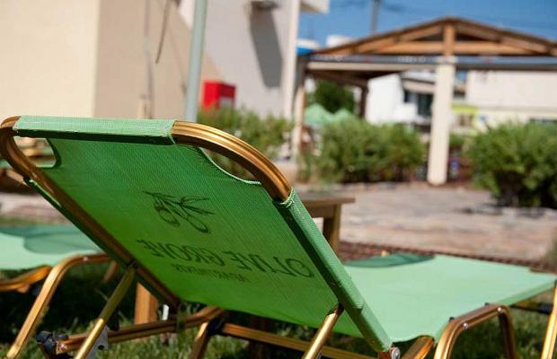 фотографии отеля Olive Grove Apartments изображение №11