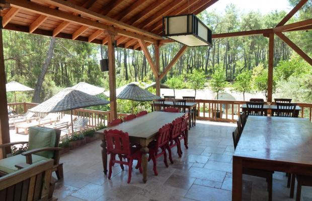 фото отеля Olympos Village Ecologic Activity Hotel изображение №21