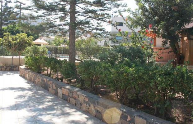 фотографии Villa Medusa изображение №12